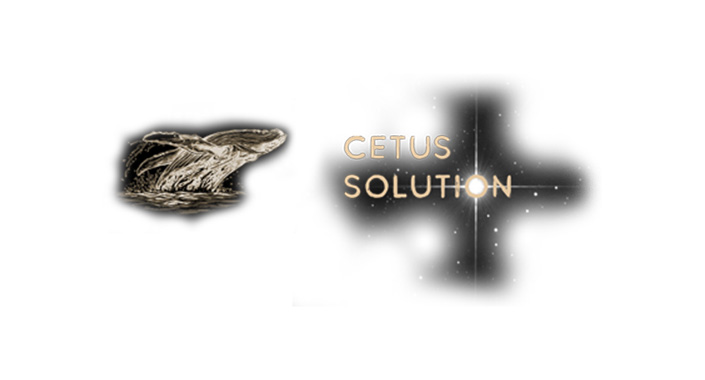 CETUS SOLUTION LLC