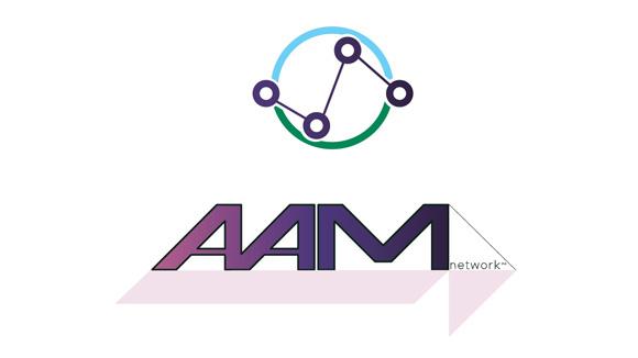 AAM NETWORK INC